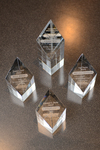 Ilana Diamond Rovner Appellate Advocacy Awards - Awards