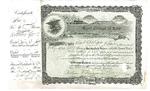 Kent College of Law Stock Certificate #12 - Kent College of Law by IIT Chicago-Kent College of Law